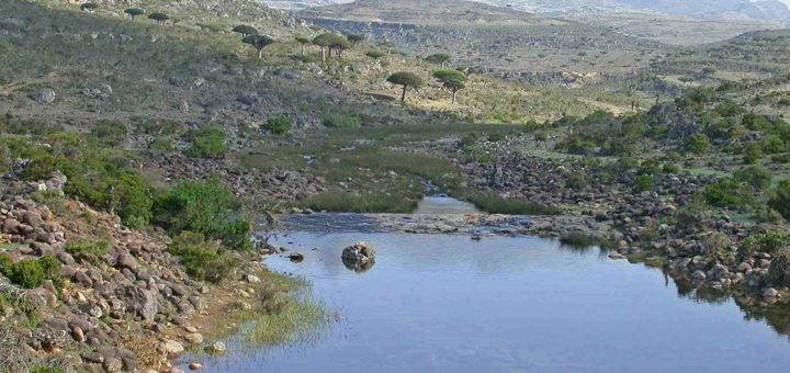 Wadi Zirage with a small pond and the Haggier Mountains appear in the background in Socotra Yemen