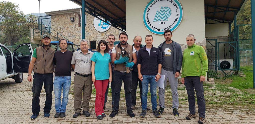 Representatives of the Turkish rehabilitation center where Anna was kept for a year together with local vets and the joint team of BSPB and Green Balkans. Photo: Ivaylo Klisurov