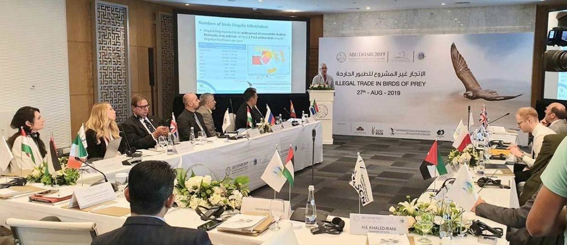 Plate 2. OSME Chairman, Rob Sheldon, presenting the results of the illegal bird killing assessment at a workshop on the illegal trade in birds of prey, ADIHEX2019, Abu Dhabi. © Nick Williams