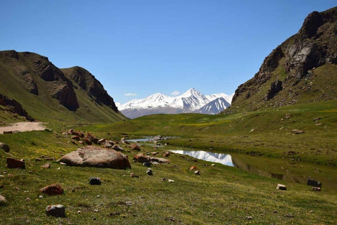 The landscape at Naryn - Saker Falcon breeding habitat. © Maxim Koshkin.