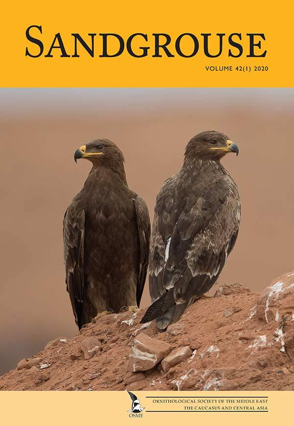 Front cover of Sandgrouse 42-1