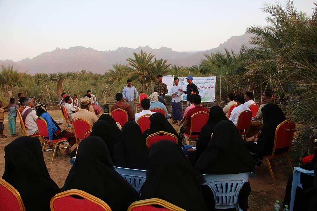 The Socotra Wildlife Association